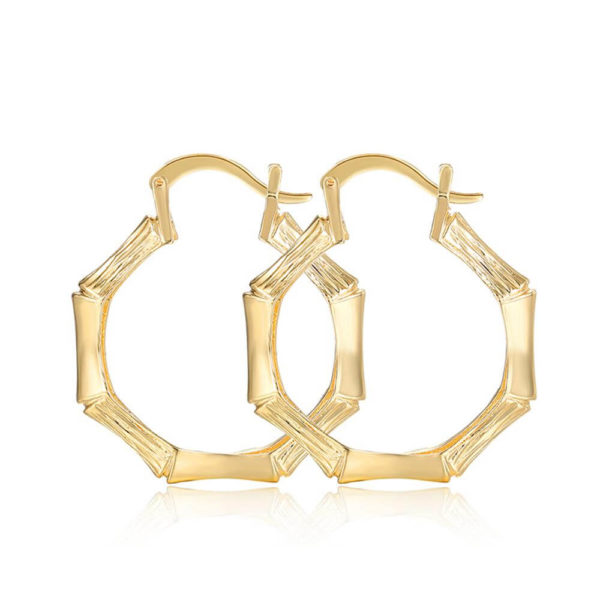 gold hoop earring trendy and stylish